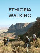 Ethiopia walking