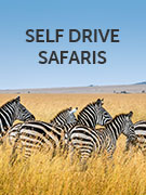 Self drive safaris