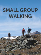 Small group walking