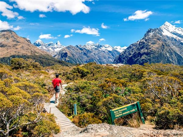 New Zealand hiking vacation small group