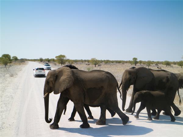 Namibia camping safari vacation