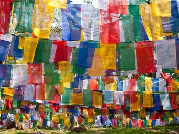 Bengal and Bhutan tour, 15 days
