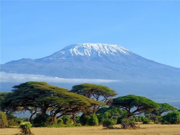 Lemosho trek up Kilimanjaro