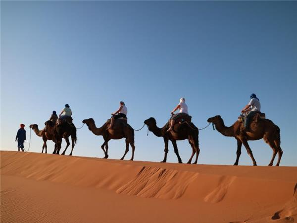 Vacation in Morocco, Imperial cities & deserts