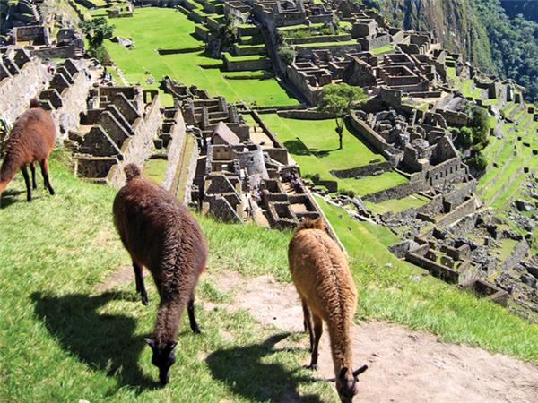 Inca trail holiday, Peru