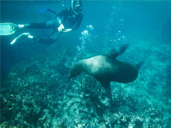 Galapagos land based adventure vacation