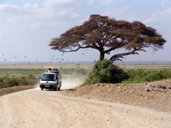 East Africa safari & Zanzibar vacation