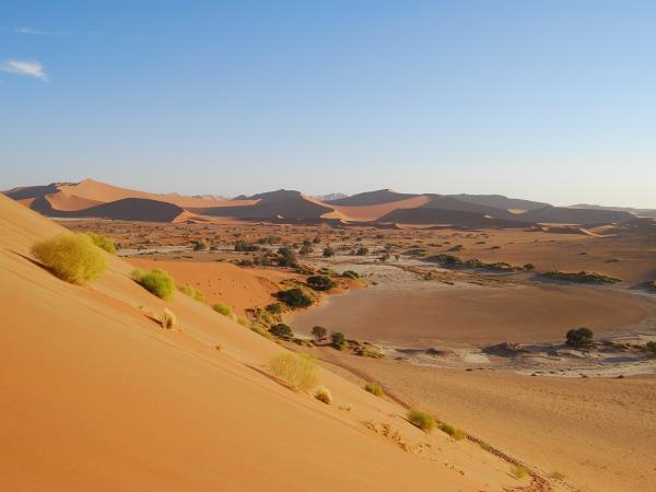 Namibia vacation, safari & desert discovery