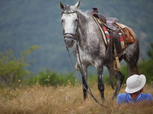 Bulgaria horse riding vacation