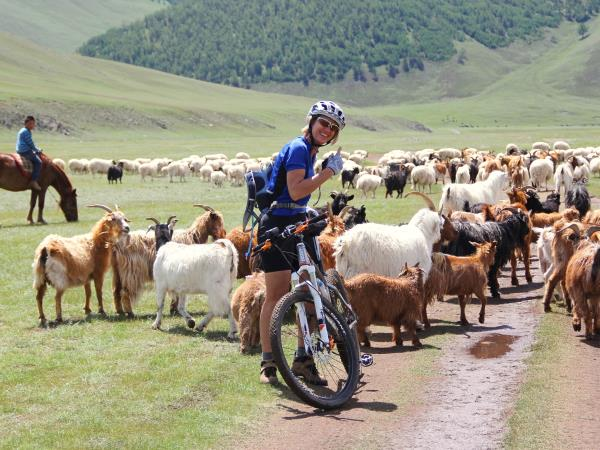 Cycling & mountain biking vacations in Mongolia