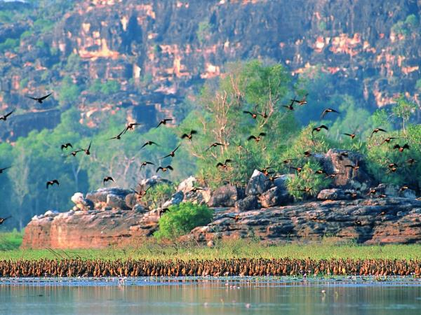 Kakadu and Arnhem Land tours, Australia