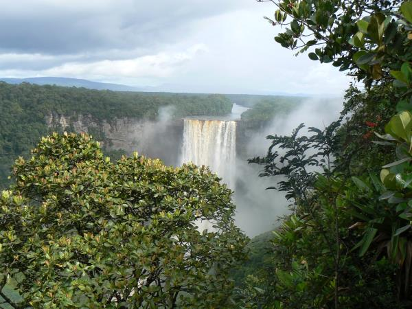 Guyana tour, wildlife and birdwatching