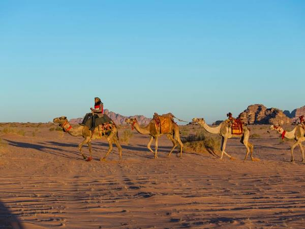 Jordan highlights & camel safari, tailor made