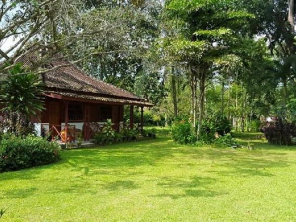 South Sumatra eco lodge, nr Way Kambas National Park