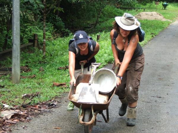 Wildlife rehabilitation volunteering in Borneo