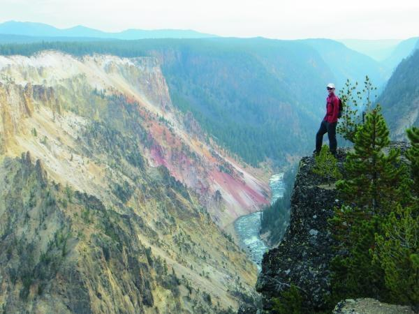 Yellowstone and Grand Teton wildlife vacation