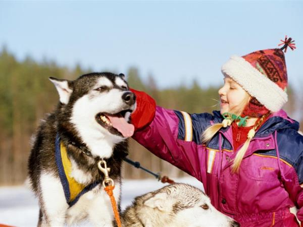 Family vacation to Finnish Lapland, the best of Kuusamo