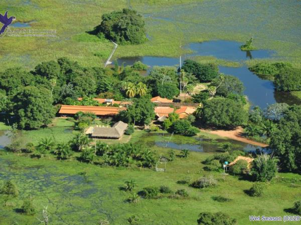 Brazil wildlife vacation, Amazon and Pantanal