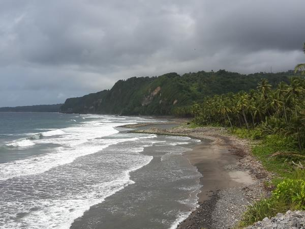 Walking and sightseeing holiday in Dominica