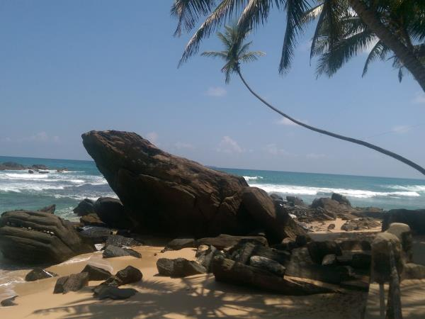 Best of Sri Lanka 21 day vacation