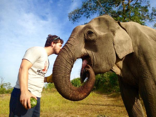 Volunteer with elephants in Cambodia
