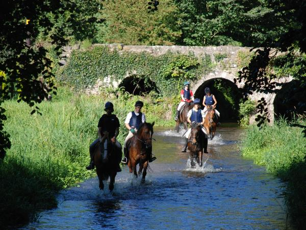 Ireland horse riding vacation, tailor made