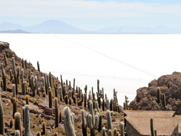 Bolivia vacation, tailor made