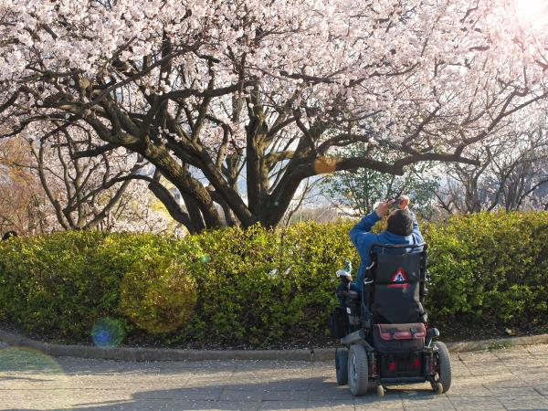 Wheelchair accessible vacation to Japan