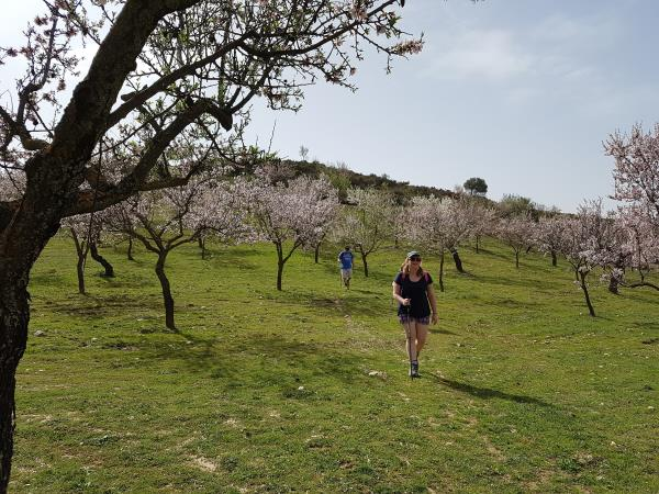 Spain hiking vacation, Walking in blossom