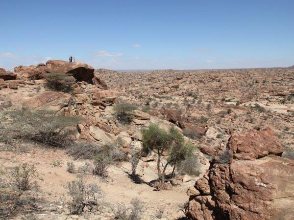 Somaliland and Djibouti tailor made tour