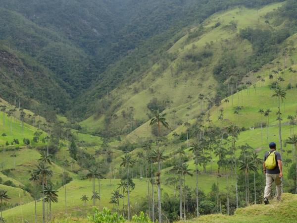 Trekking vacation in Colombia
