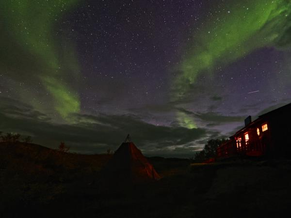 Northern Lights and King crab vacation in Norway