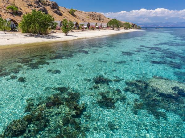 Dive tour in Indonesia, Bali & Komodo