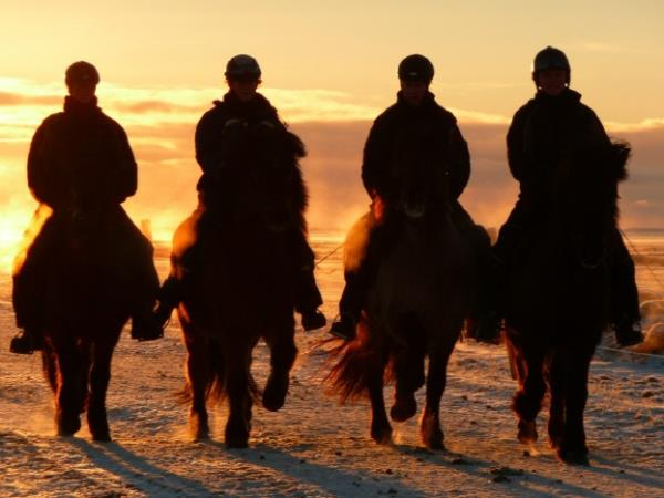 Iceland horse riding vacation