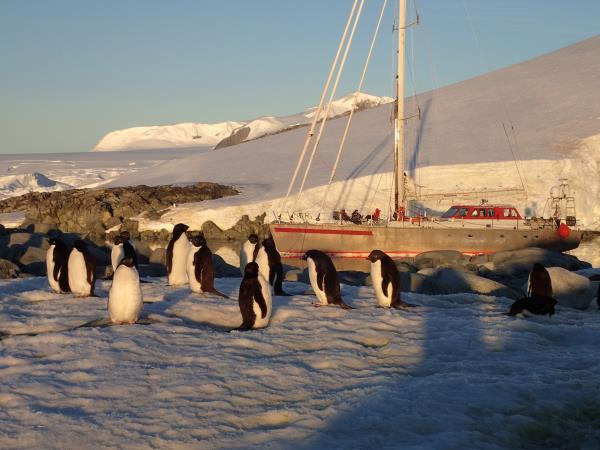 Antarctic sailing expedition, 21 days