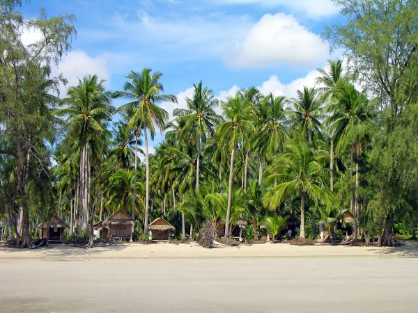 Thailand hilltribes, rainforests and beaches tour