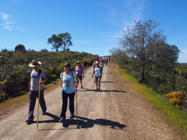 Eastern Algarve food & wine walking tour