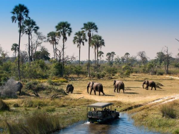 Zimbabwe, Botswana & South Africa Safari tour