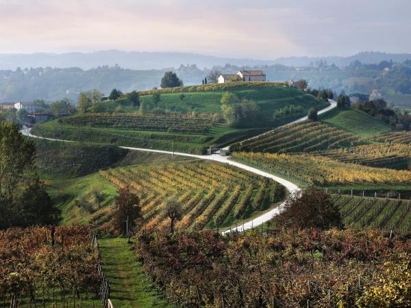 Cycling vacation in the Prosecco Hills, Italy