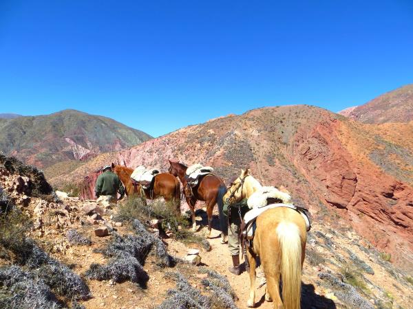 Argentina horseriding vacation in Province of Salta and Jujuy