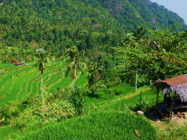 Off the beaten track tour of Bali