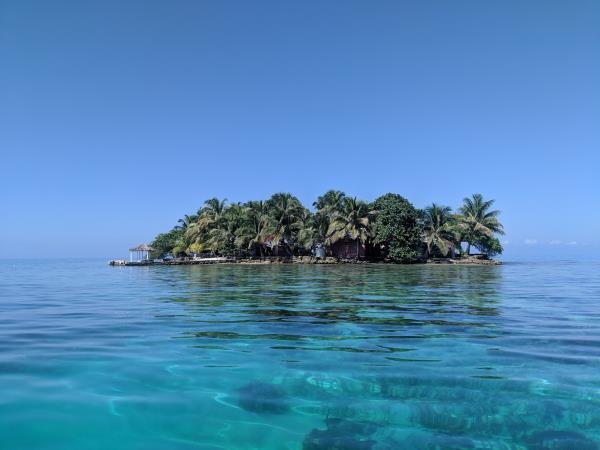 Reef conservation volunteering in Belize