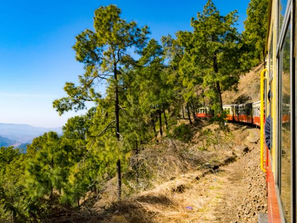Indian Himalayas tour, toy trains and hill stations