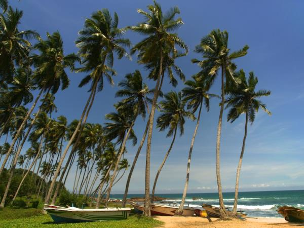 Halal friendly Sri Lanka tour