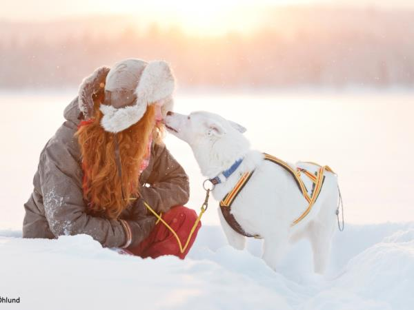 Swedish Lapland winter family holiday
