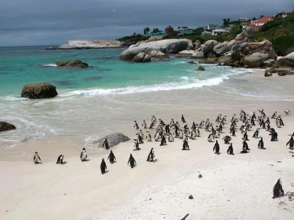 Wheelchair accessible South Africa self drive vacation