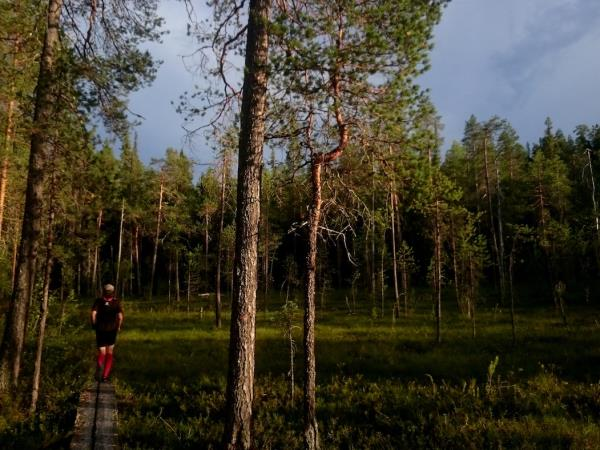 Trail running vacation in Finland