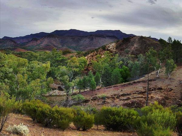 Flinders Ranges self guided walking vacation, Australia