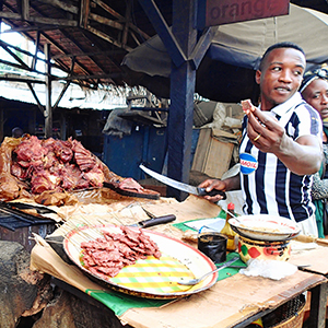 Southern Africa Bushmeat & skins