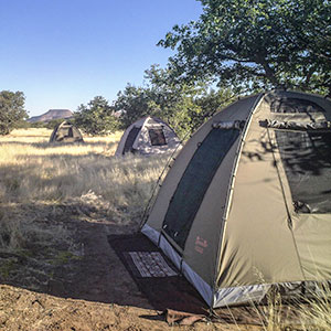 Bush camp safaris Map & highlights